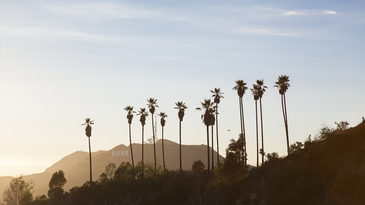 #2: Eight ways to be a stereotypical Angeleno