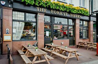 Forest Tavern