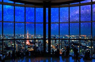 Starry Sky Illumination