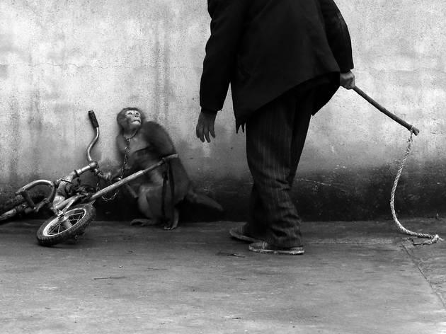 (Yongzhi Chu, China)