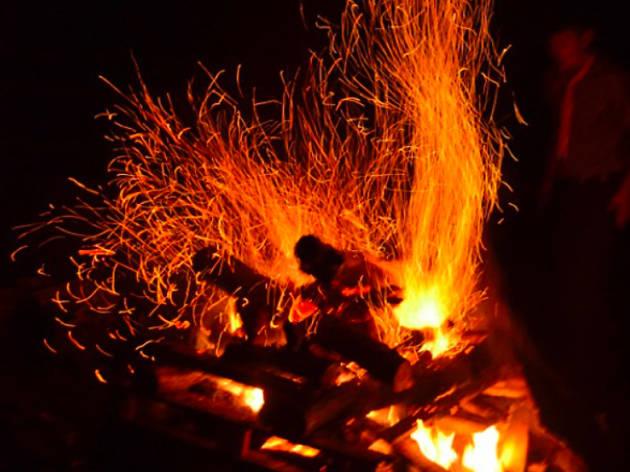 Wild Wolf Fireworks