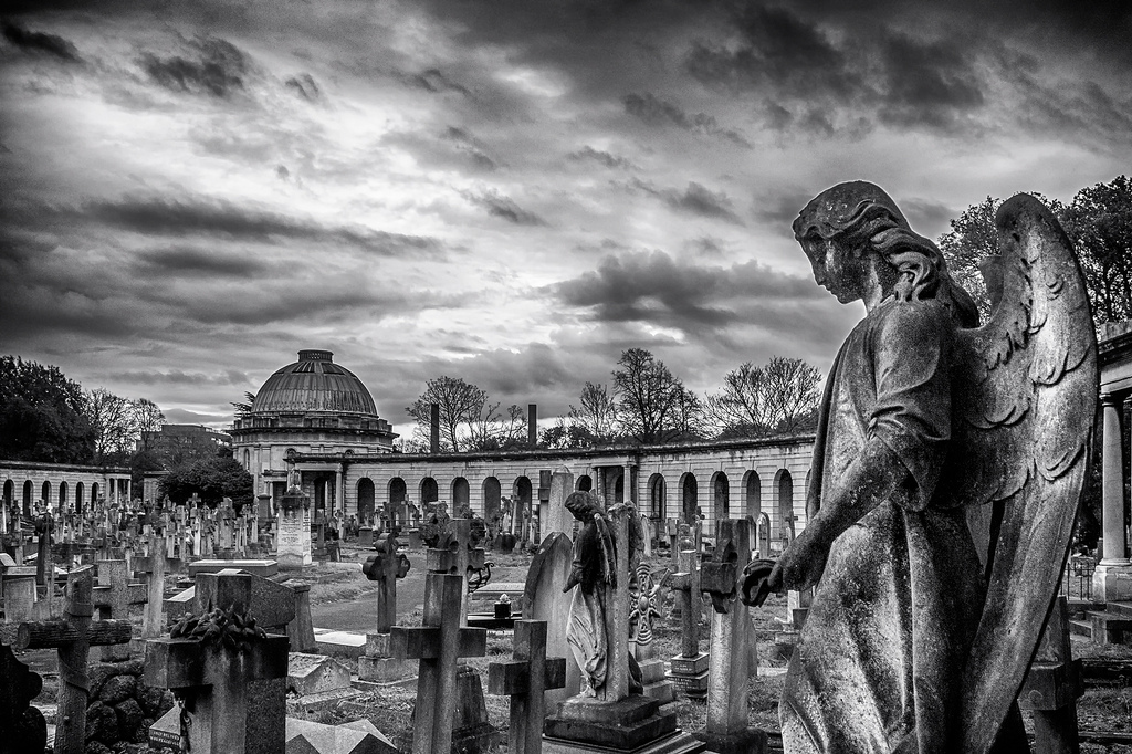 An angel looks over Brompton Park Cemetery
