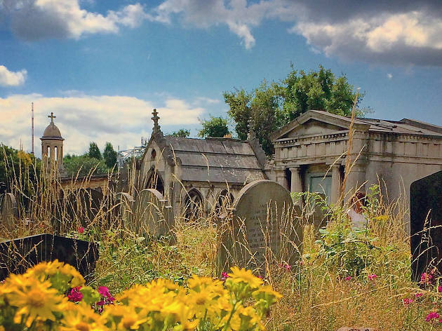 Summer in Brompton Cemetery