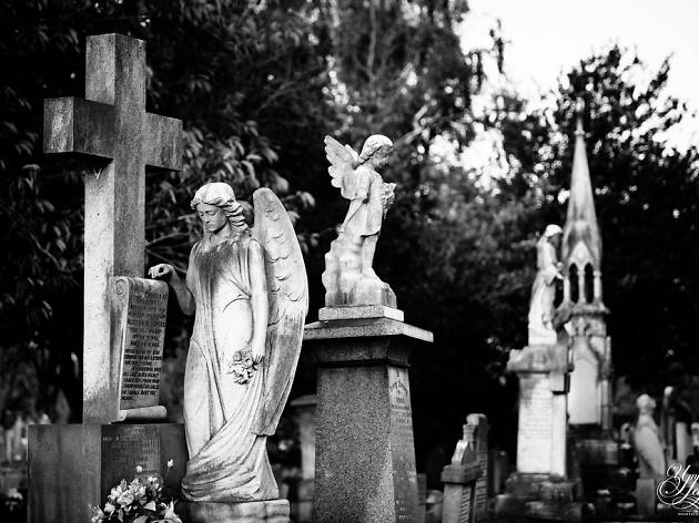 An angel statue in Manor Park Cemetery