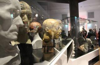 Musée de l'Homme (©C.Gaillard)