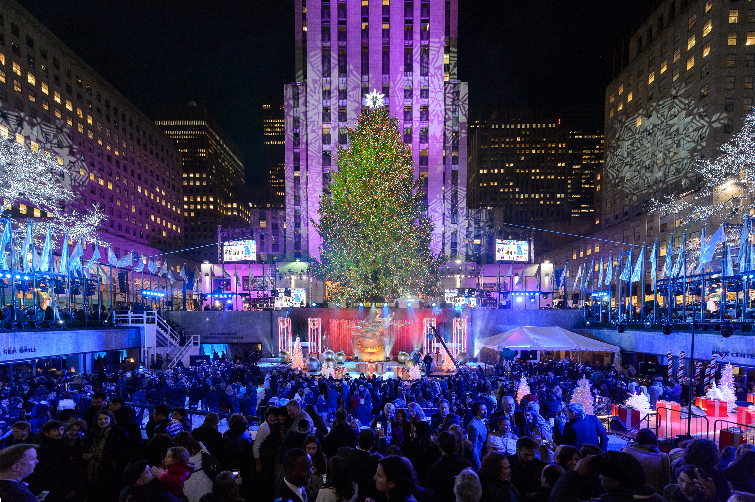 Your guide to Christmas for kids in NYC!