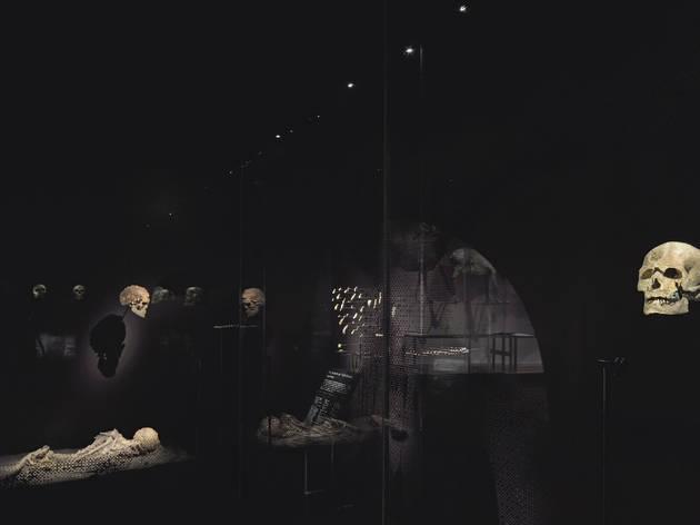 (© J.C. Domenech / Le Musée de l'Homme)