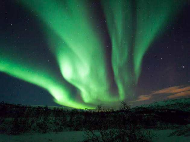 Northern Lights Meteor Shower Will Be Visible In Midwest