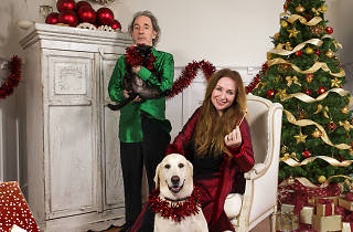 Harry Shearer and Judith Owen: Christmas Without Tears (Does This Tree Make Me Look Fat?)