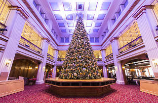 Five festive holiday tours to take in Chicago this season