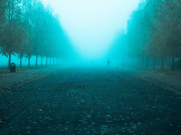 A foggy day in Finsbury Park, London.