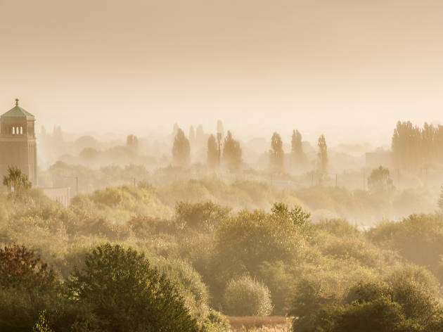 A misty morning at Northold, an outer London suburb.