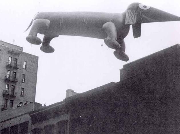 Dachshund, 1929