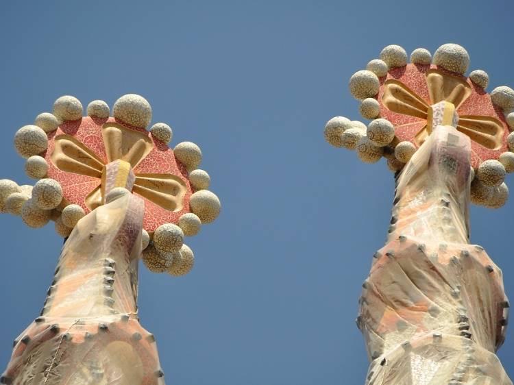 'Floripondios' de la Sagrada Família