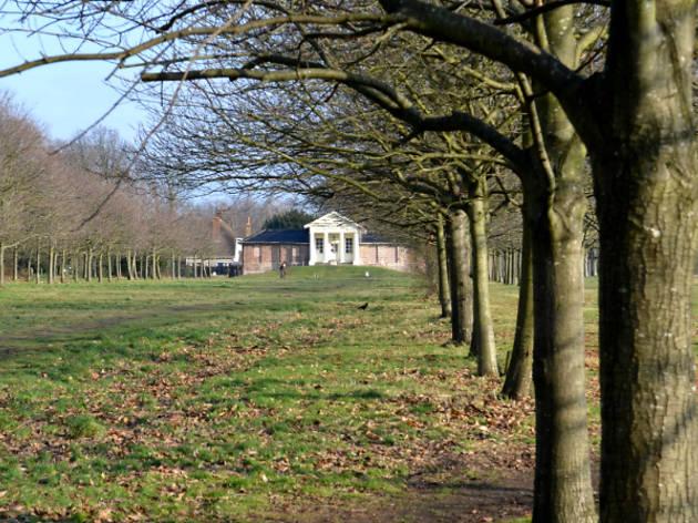 Temple Garden Wanstead Park 2015