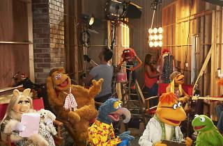 Los Muppets en Canal Sony