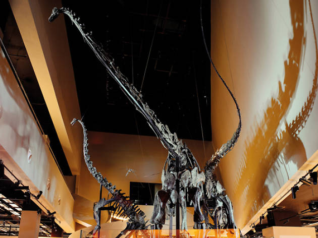 19 best museums in Singapore