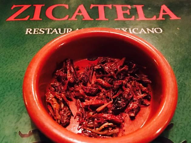 Zicatela (Des chapoulines ( sauterelles ) pour le croquant )