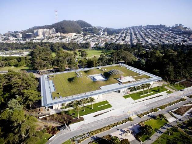 California Academy of Sciences Living Rooftop