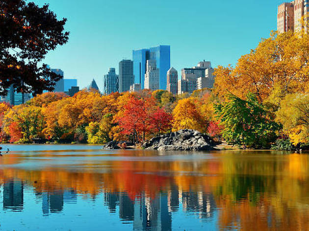 32 things New Yorkers should be thankful for