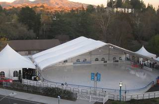 Walnut Creek on Ice