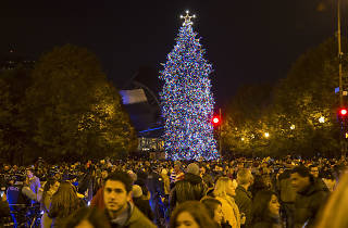 Where to attend holiday tree lighting ceremonies in Chicago
