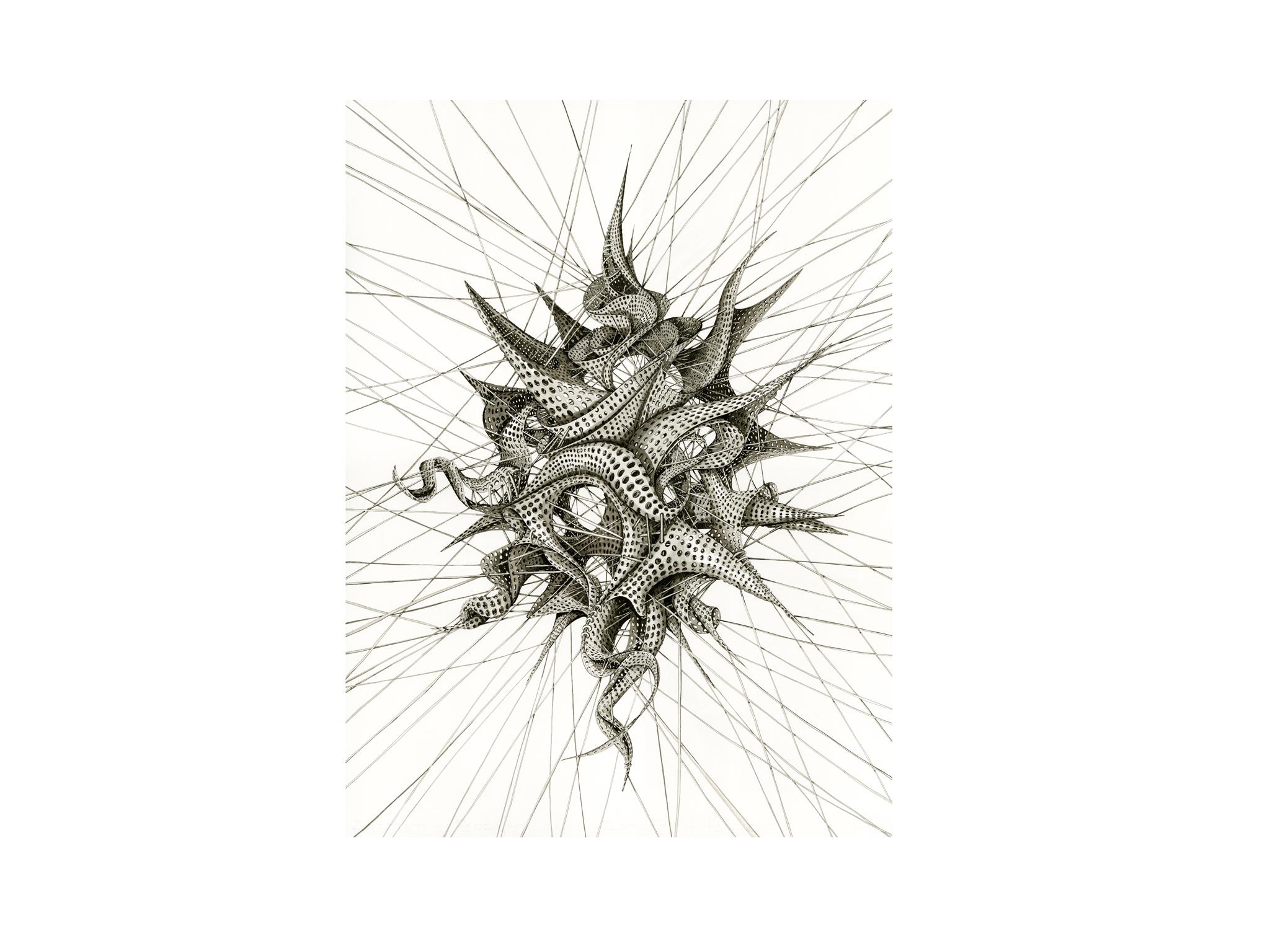 'Escher Star' by Ruth Uglow