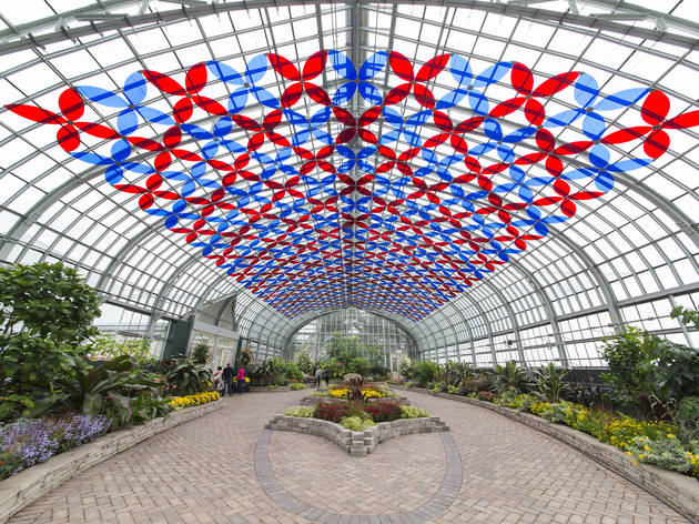 New art installation has transformed the Garfield Park Conservatory