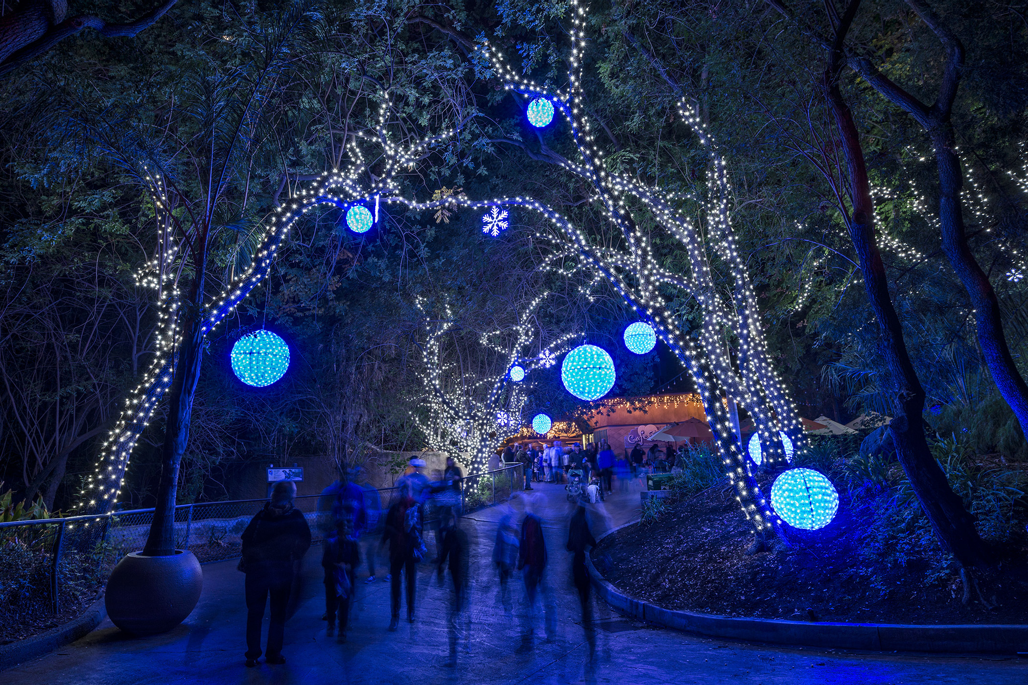 Holiday Happy Hour at LA Zoo Lights