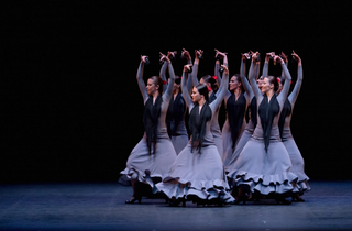 Carmen / Suite Flamenca
