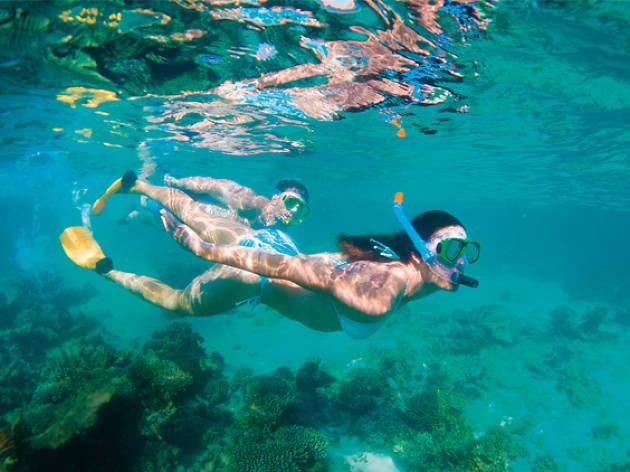 Explore marine playgrounds