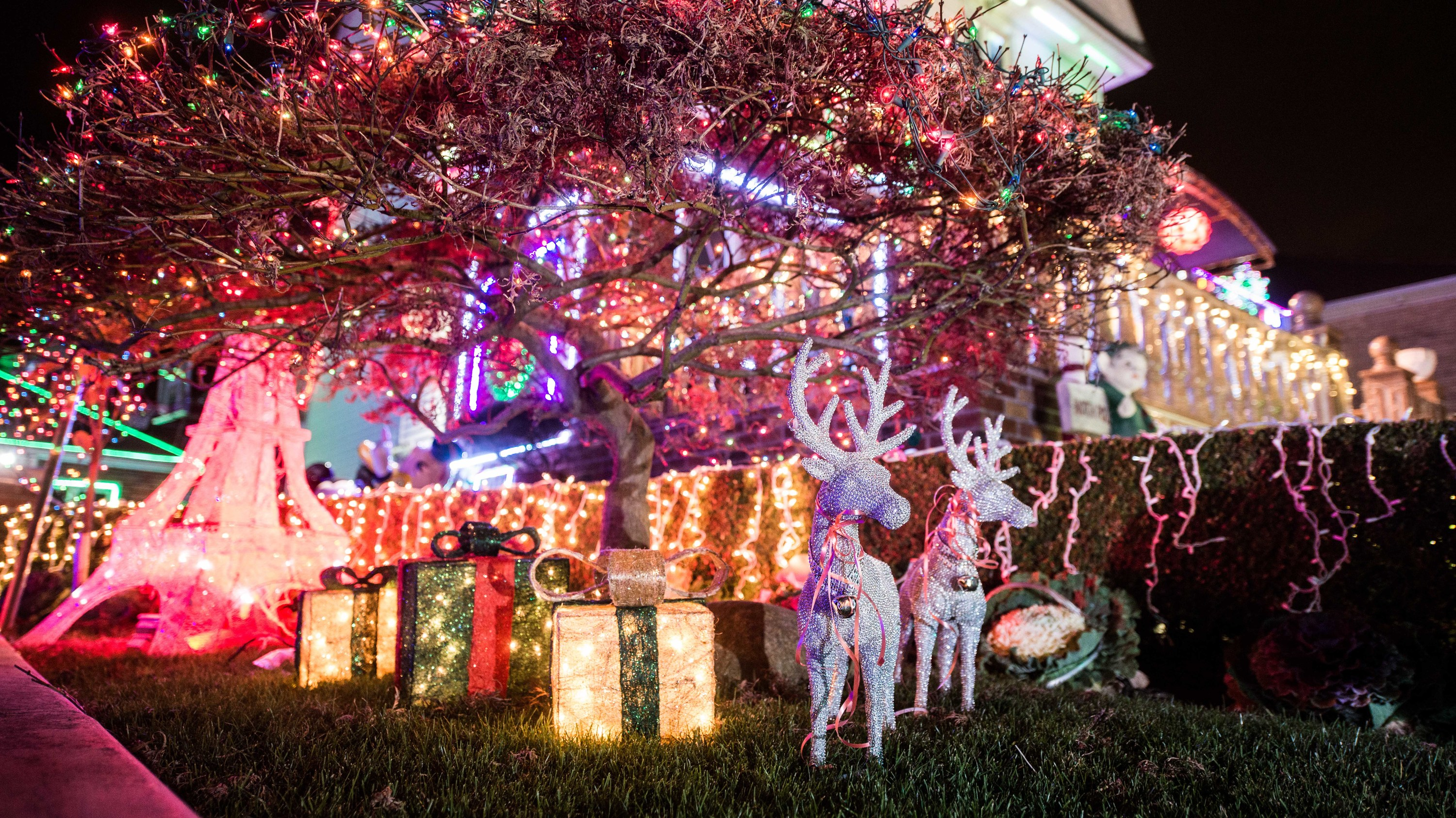 see stunning photos of the dyker heights christmas lights