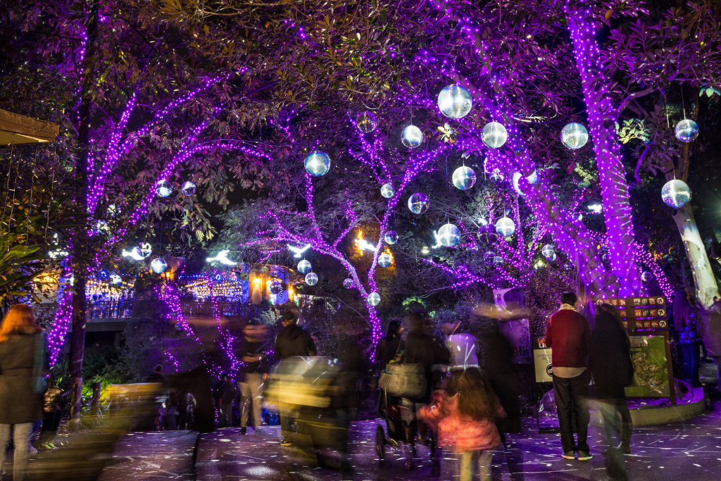 la zoo lights los angeles zoo los angeles ca things to do in los angeles