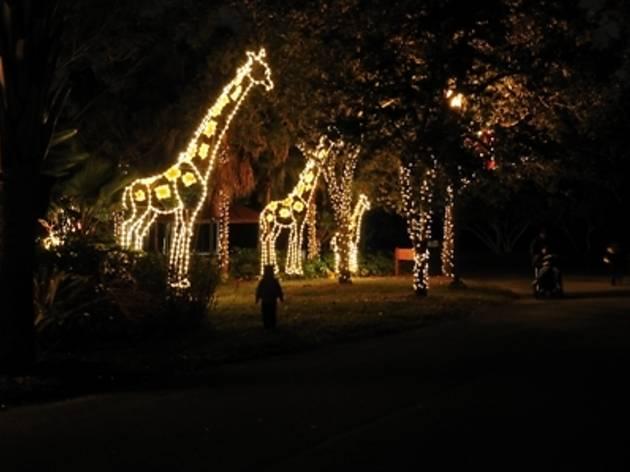 Zoo Lights at Zoo Miami