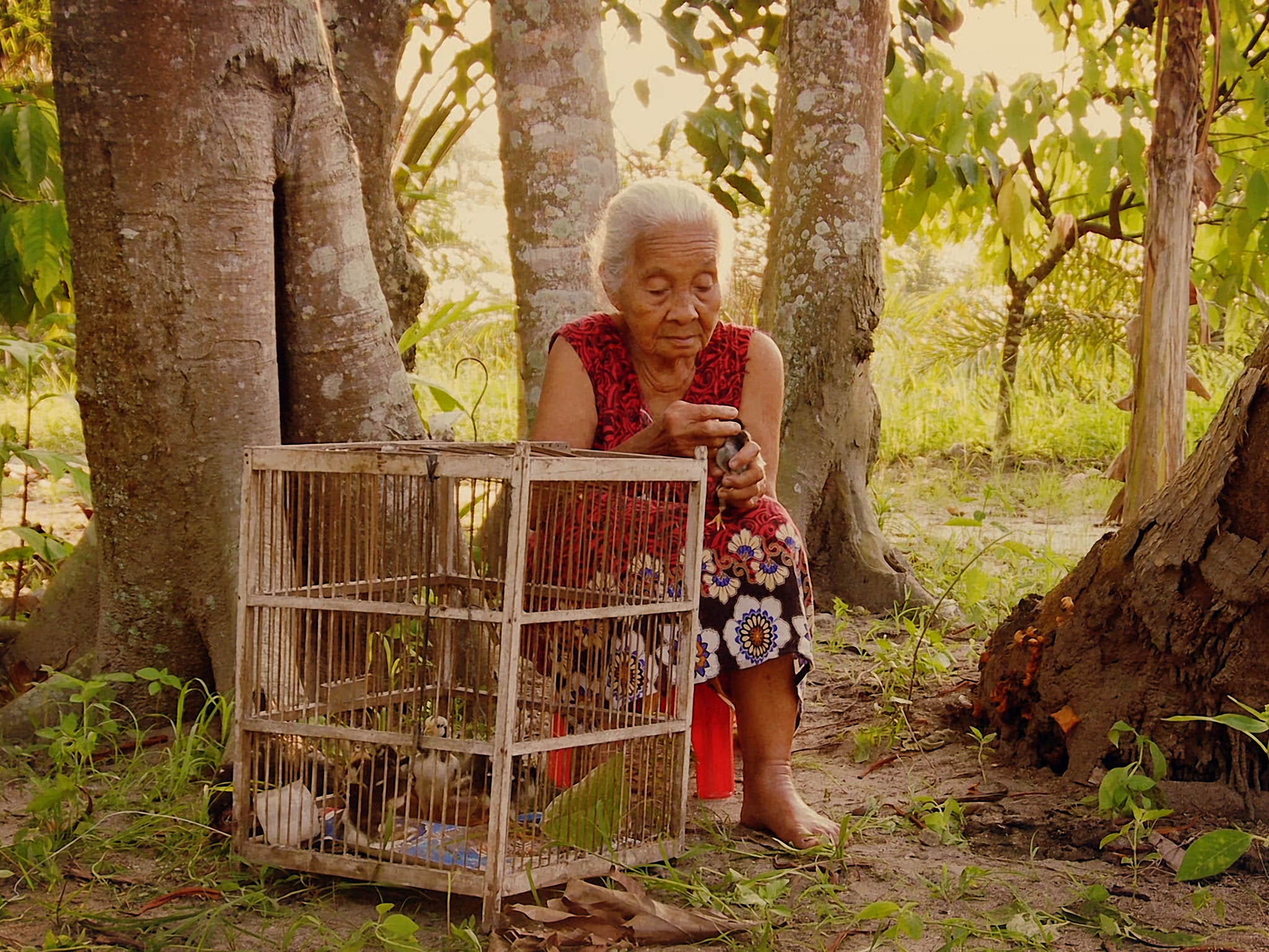 best movies 2015 - the look of silence