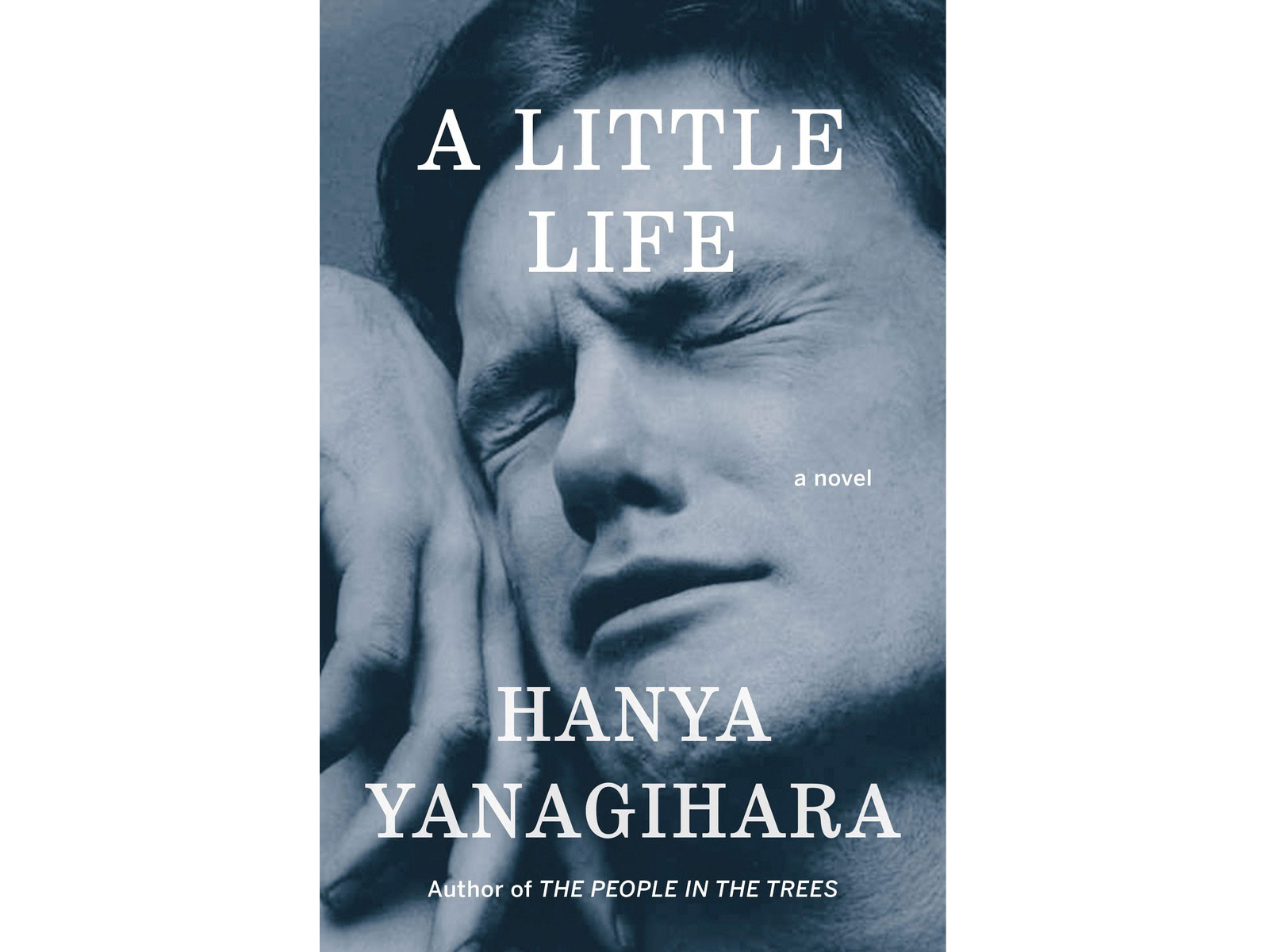 A Little Life, by Hanya Yanagihara