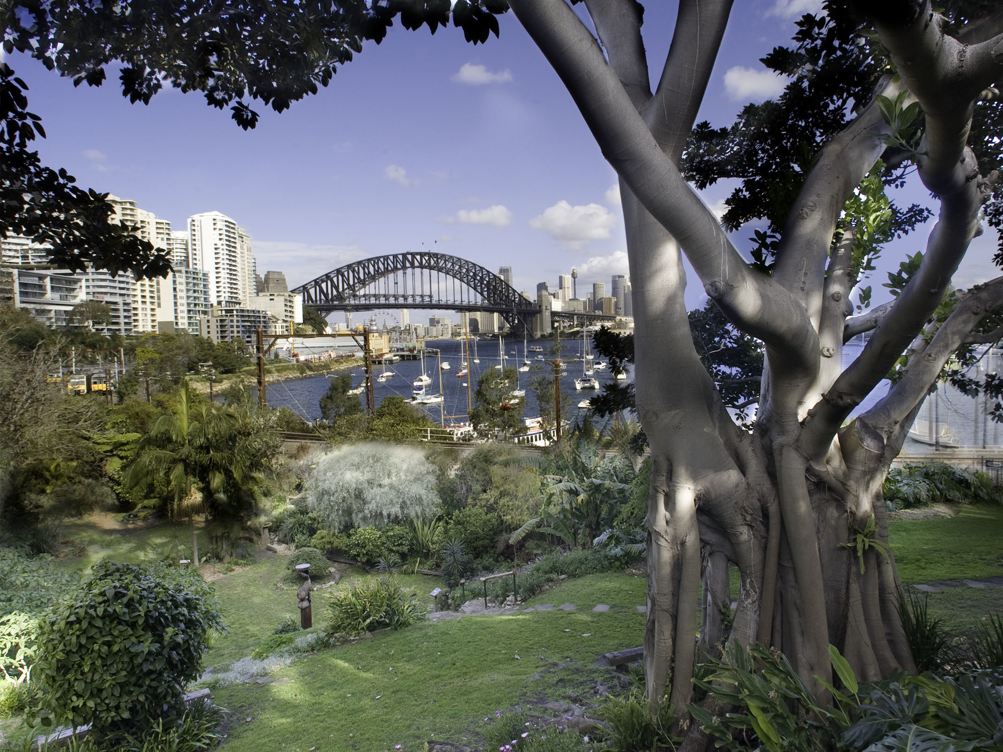 Secret Garden: Things To Do In Lavender Bay, Sydney