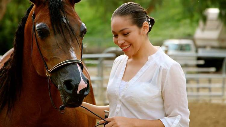 Taking the Reins gives at-risk girls have the opportunity to ride and care for horses, among other things.