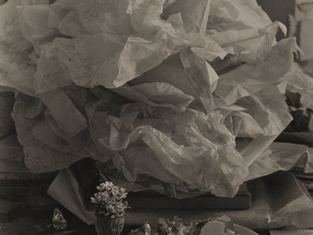 Enchevêtrement sur ma table 1967 Josef Sudek Épreuve gélatino-argentique, 39,6 x 29,8 cm. Don anonyme, 2010.