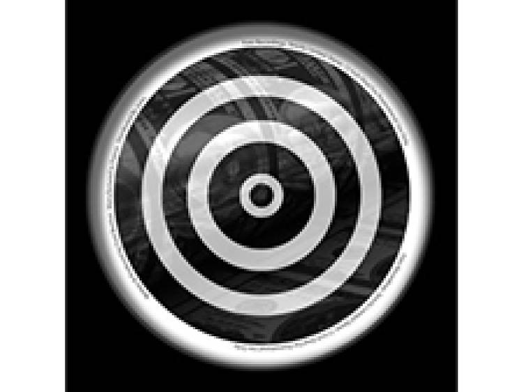 "DJ Steef, ""Shaking"" (The Revenge Remix)"