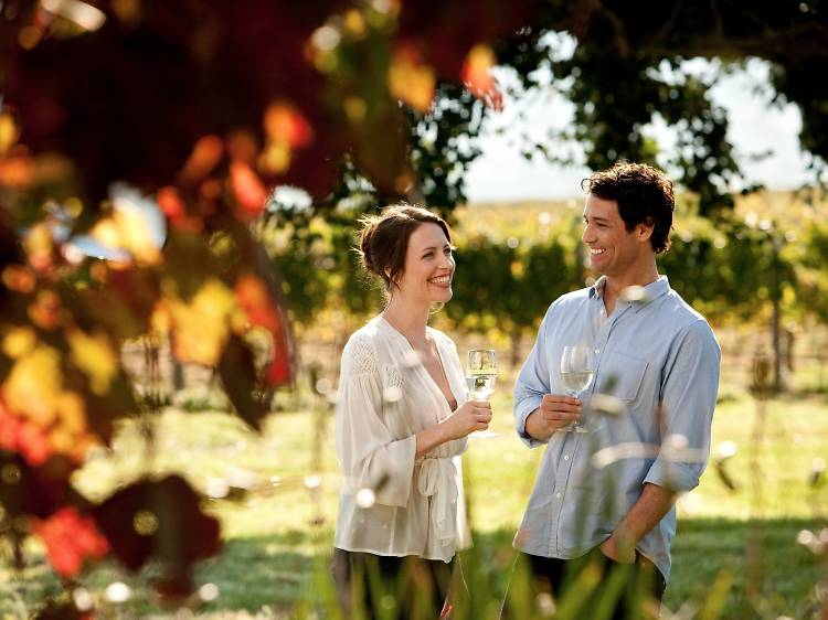 Wine and dine in the Yarra Valley