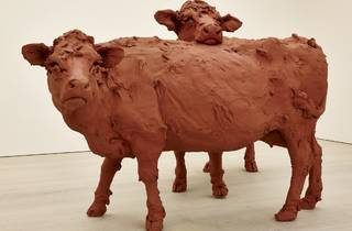 (Stephanie Quayle, 'Two Cows', 2013. Image courtesy of the Saatchi Gallery, London)