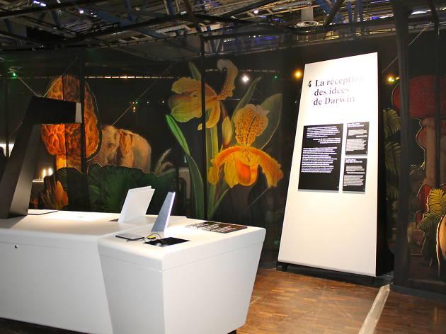 Darwin expo (©C.Gaillard)