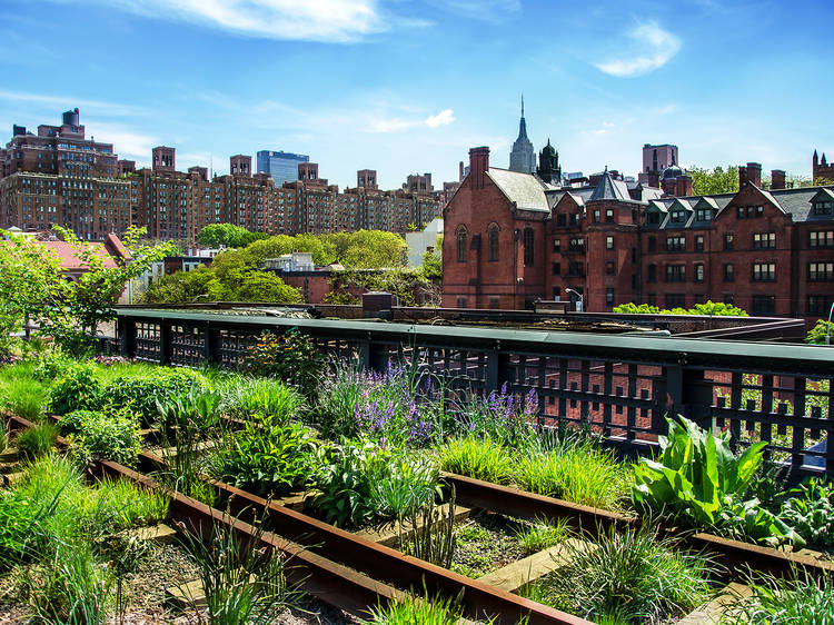 There's more green space than ever before