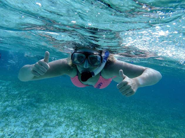 The top snorkelling spots in Sydney