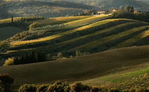 Toskana büyüsü Chianti
