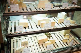 cheese no koe