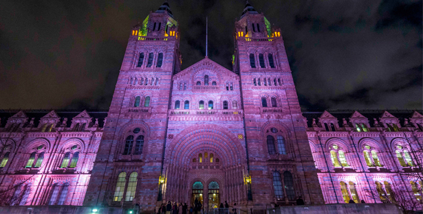 After-school Club for Grown-ups at the Natural History Museum