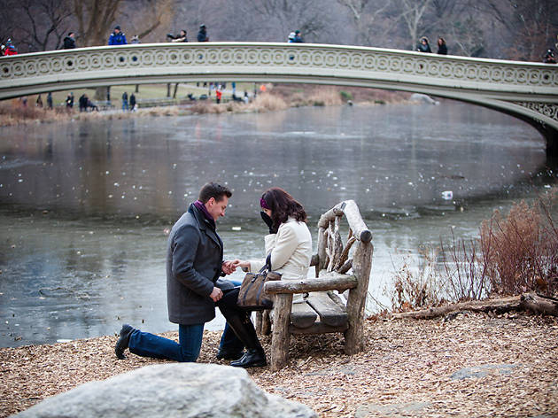 Photos Of The Most Romantic Engagement Spots In Nyc