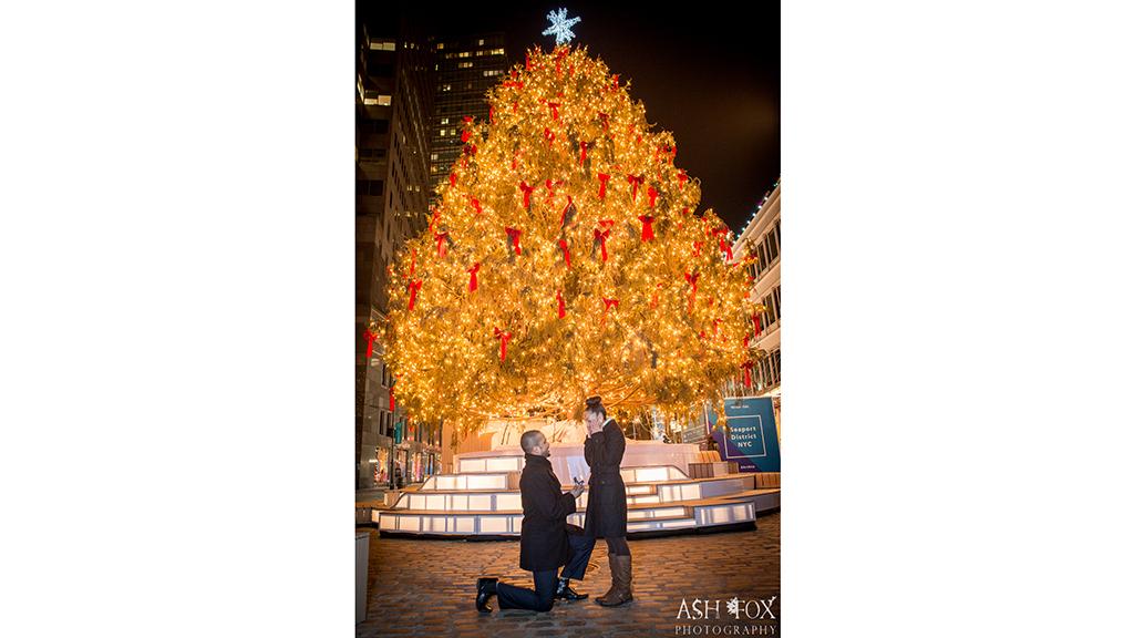 South Street Seaport Christmas Tree